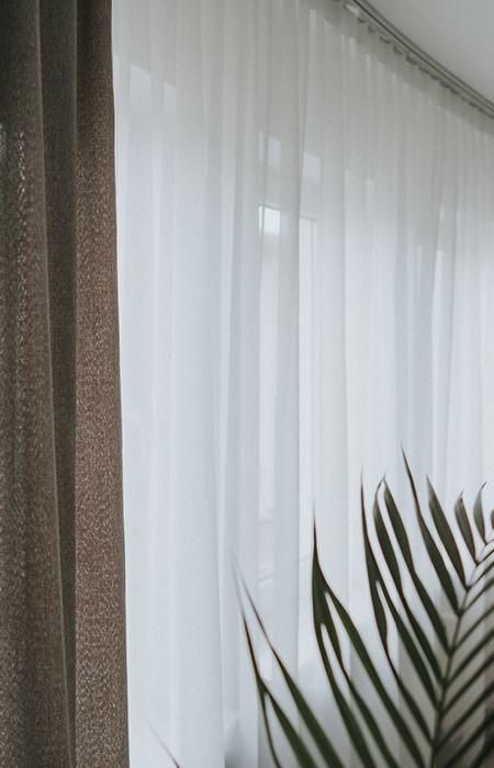firana okienna, widoczny fragment rośliny